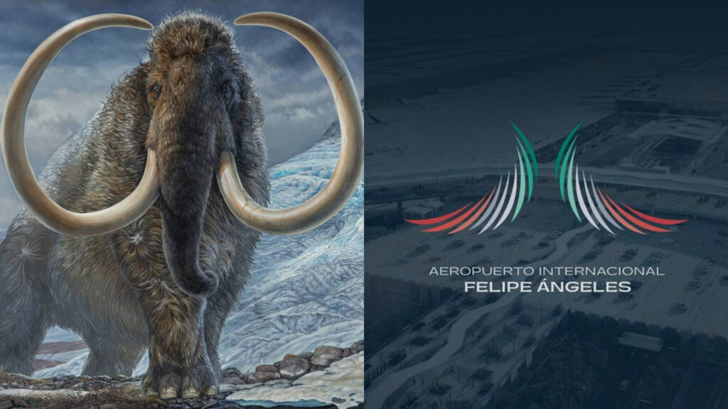 logo de AIFA mamut