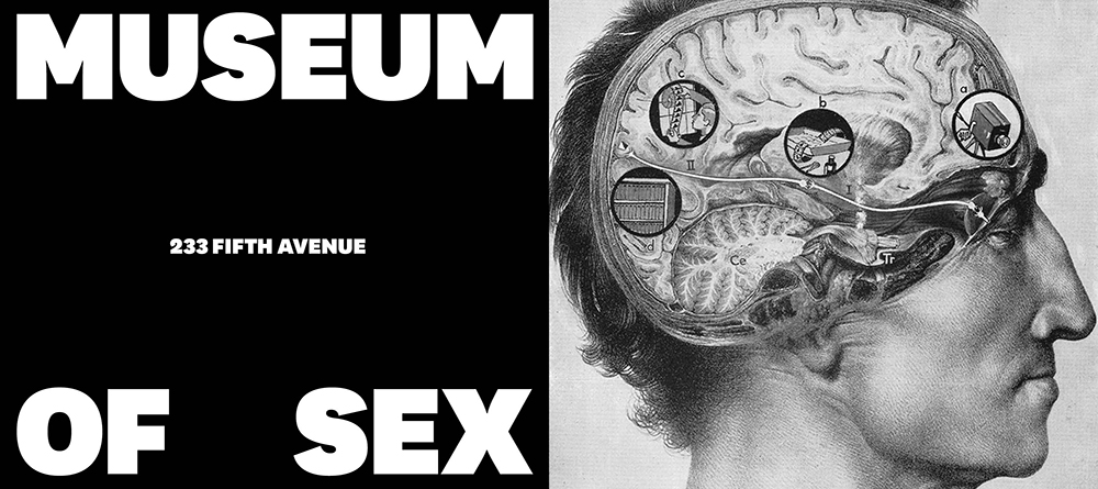 museum_of_sex_nueva_marca_base_9.jpeg