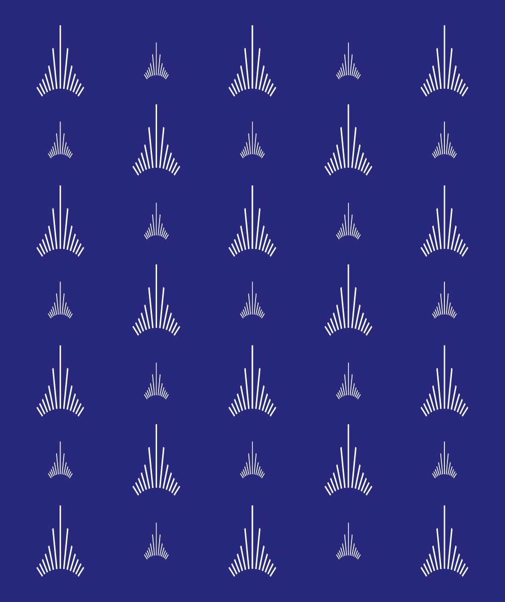 paris_aeroport_pattern.png